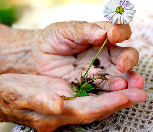 Tips to prevent skin failure and wounds in hospice patients
